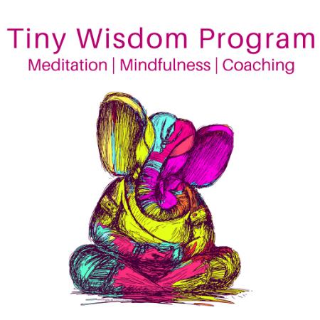 Tiny Wisdom Program